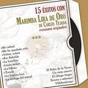 15 Éxitos Con la Marimba Lira de Oro  (Versiones Originales) Songs