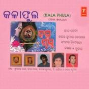 Dekha Jhuli Jhuli Song