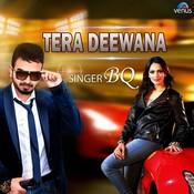 Tera Deewana Songs