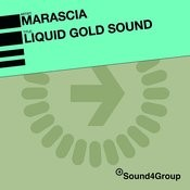 Liquid Gold Sound (Re-Bassed Mix) Song