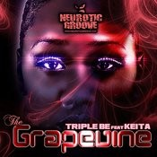 The Grapevine Songs