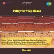 Patlay Tar Vhay Mhana Songs