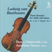 Sonata For Violin And Piano No. 1 In D, Op. 12/1: III. Rondo: Allegro Song