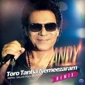 Toro Tanha Nemeezaram (Salar Moghadam Remix) Songs