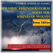 Prairie Thunderstorm With The Sound Of Wolves: Natural Sounds Of Nature: Bonus Edition Songs