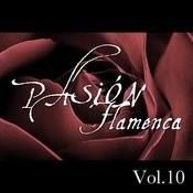 Pasión Flamenca Vol.10 Songs