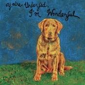 You're Underfed, I'm Wonderful Songs