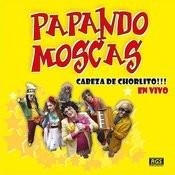 Cabeza De Chorlito (Vivo) Song
