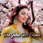 Tere Jeha Hor Disda Song