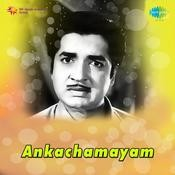 Ankachamayam Songs