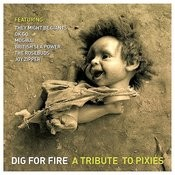 Dig For Fire: A Tribute To Pixies Songs