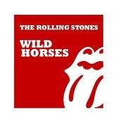 Wild Horses Song