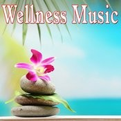 Wellness Music Songs