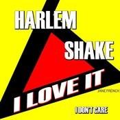 Harlem Shake I Love It I Don't Care Songs