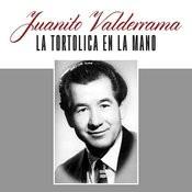 La Tortolica En La Mano Songs