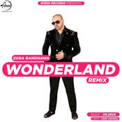 Wonderland Remix Song