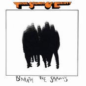 Beneath The Shadows Songs