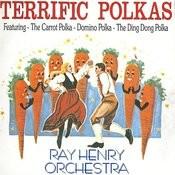 Terrific Polkas Songs