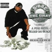 A Fine Mess: Bleed Da Block Songs