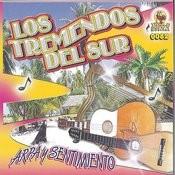 El Andariego Song