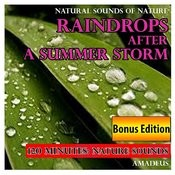 Raindrops After A Summer Storm: Natural Sounds Of Nature: Bonus Edition Songs