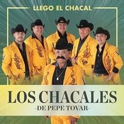 Llego El Chacal Songs