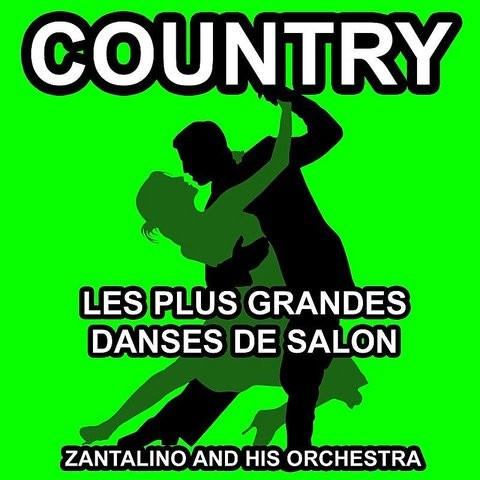Les plus grandes danses de salon country danse songs for Danse de salon nord