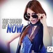 The Sound Of Now Songs