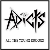 All The Young Droogs Songs