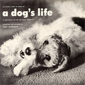 An Actual Story In Sound Of A Dog's Life Songs