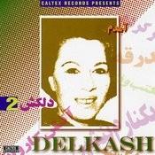 Amadam, Delkash 2 - Persian Music Songs