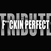 F**kin' Perfect (Pink Tribute) Songs