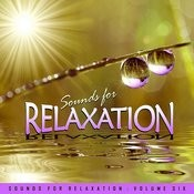 Sounds For Relaxation Vol. 6 Songs