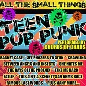 All The Small Things: Teen Punk Rock Songs
