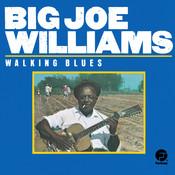 Walking Blues (Remastered) Songs