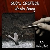 Whale Song (90 Minutes) Songs
