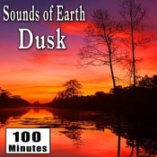 Sounds Of Earth: Dusk Songs