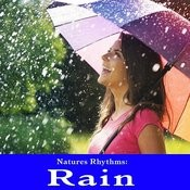Natures Rhythms: Rain Songs