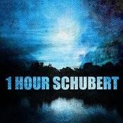1 Hour Schubert Songs
