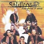 Essencial 20 Anos Songs