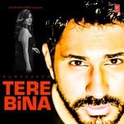 Tere Bina Song