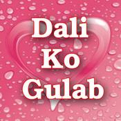 Dali Ko Gulab Songs