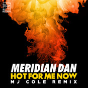 Hot For Me Now (MJ Cole Remix) Songs