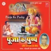 Pooja Ke Pushp (Bhaktiras Ke Bhajan Aur Keertan) Songs