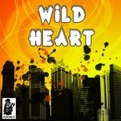 Wild Heart Songs