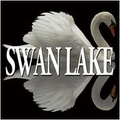Tchaikovsky : Swan Lake & The Sleeping Beauty [Excerpts] Songs