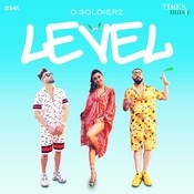 Level D Soldierz Full Mp3 Song