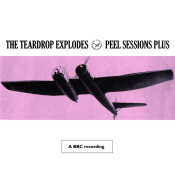 Peel Sessions Plus Songs