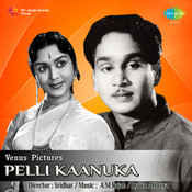 Pelli Kaanuka Songs
