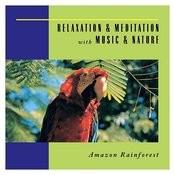 Amazon Rainforest Song